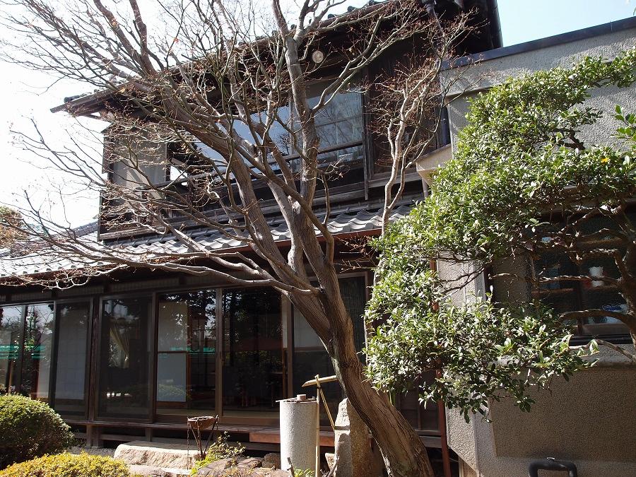 吉田おでかけ 川越「丹徳庭園」建物P3183527