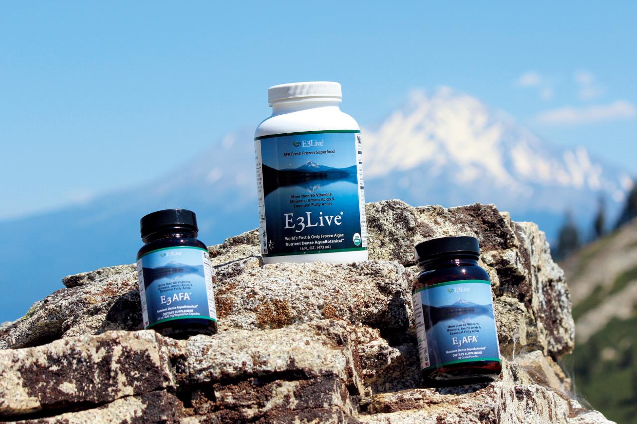 1日に必要なビタミン、アミノ酸(人体に必要な20種類すべて)を含むE3Live