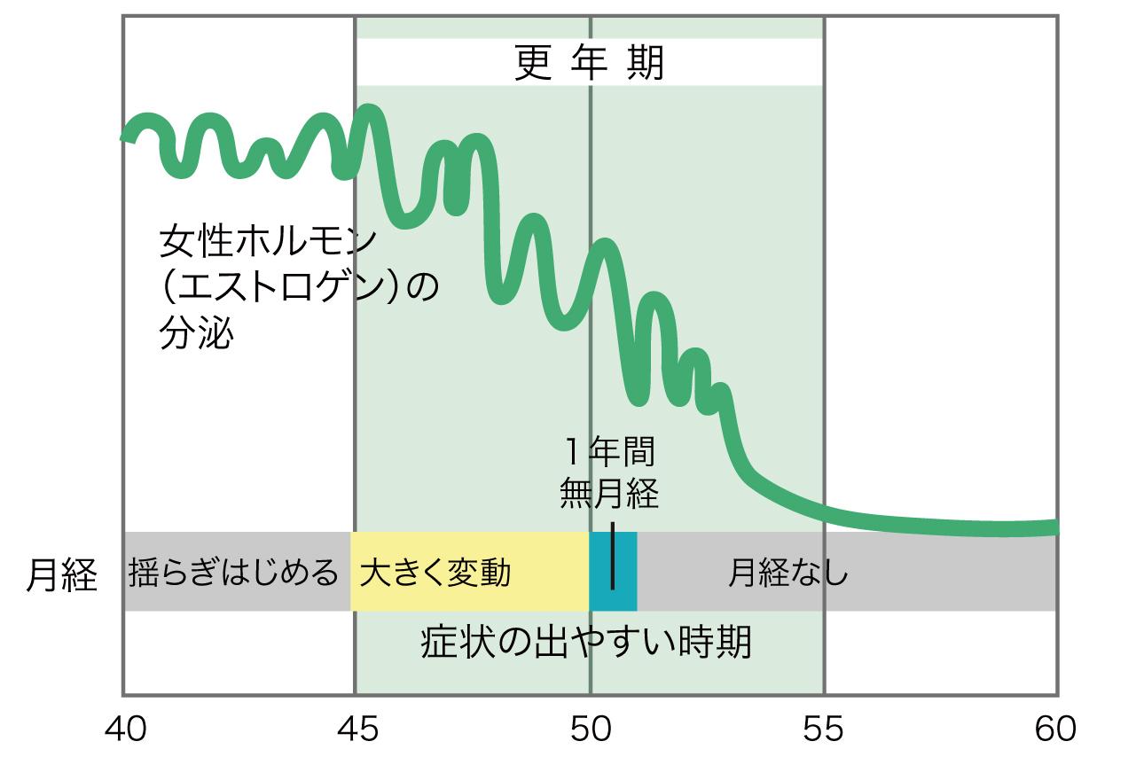 女性ホルモンの減少を表したグラフ。更年期時期