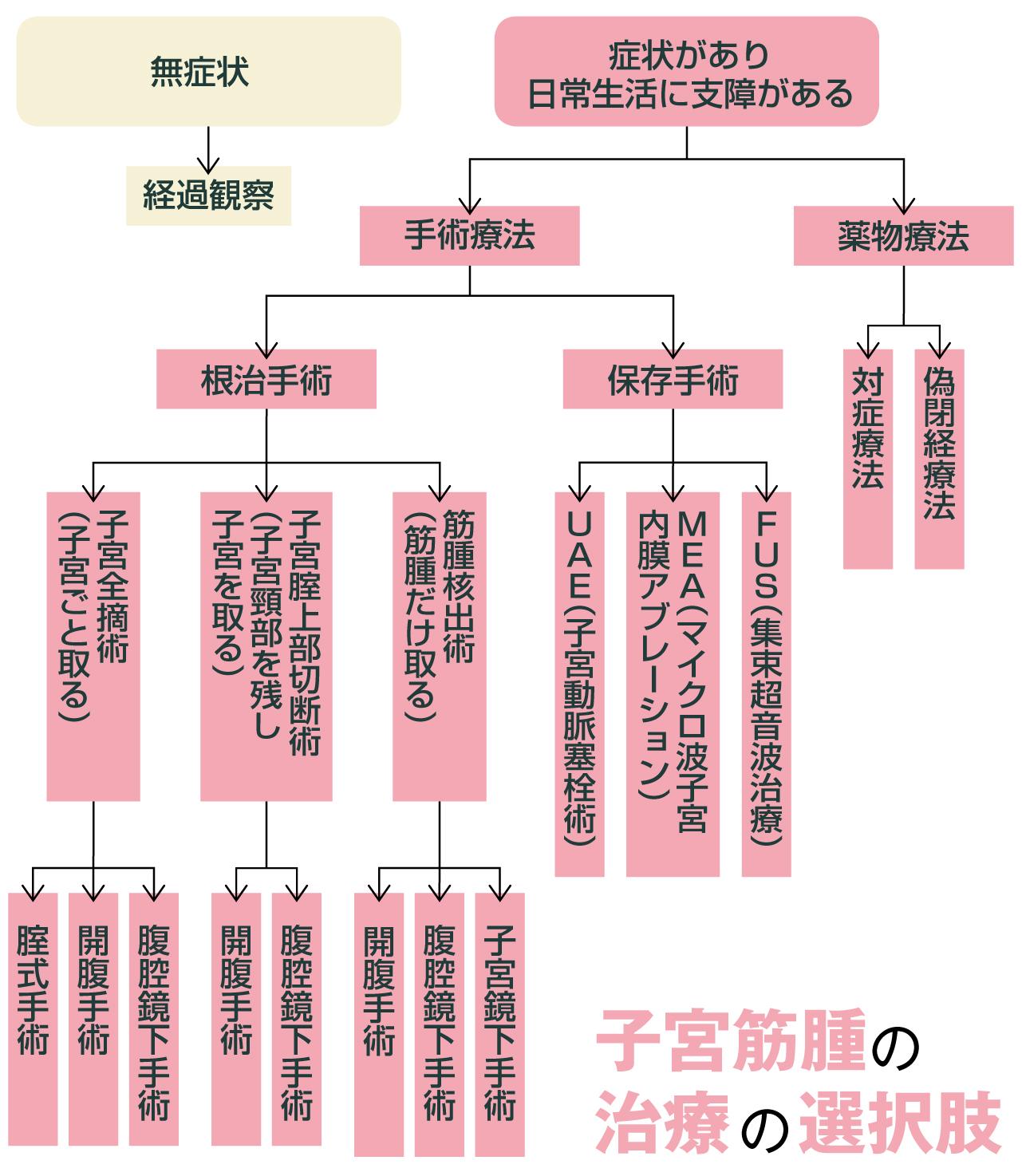 子宮筋腫の治療と選択肢の枝分かれ図