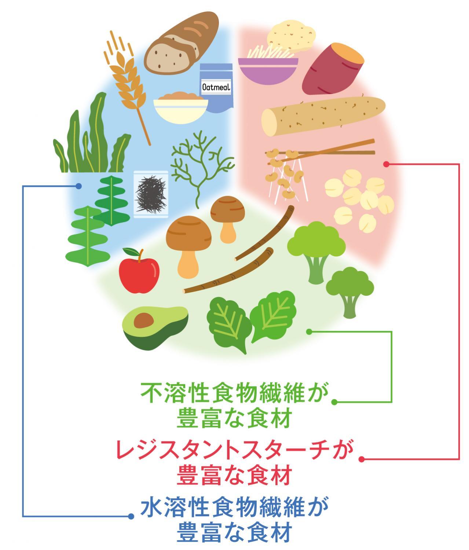 食物繊維が含まれる食材の分類