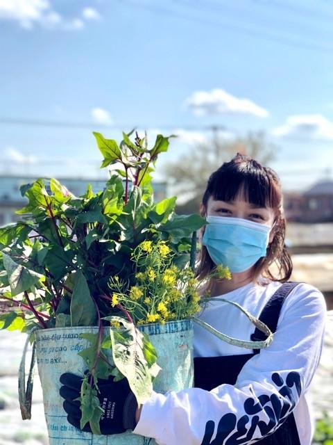 畑の加藤紀子