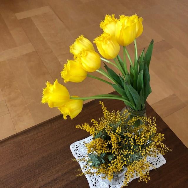 東信『JARDINS des FLEURS (ジャルダン・デ・フルール)』8日後の黄色いチューリップとミモザ