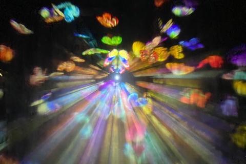 ここに行ったらぐっすり眠れる?! チームラボのアート&サウナの新感覚体験で、自律神経はどう「ととのう」?
