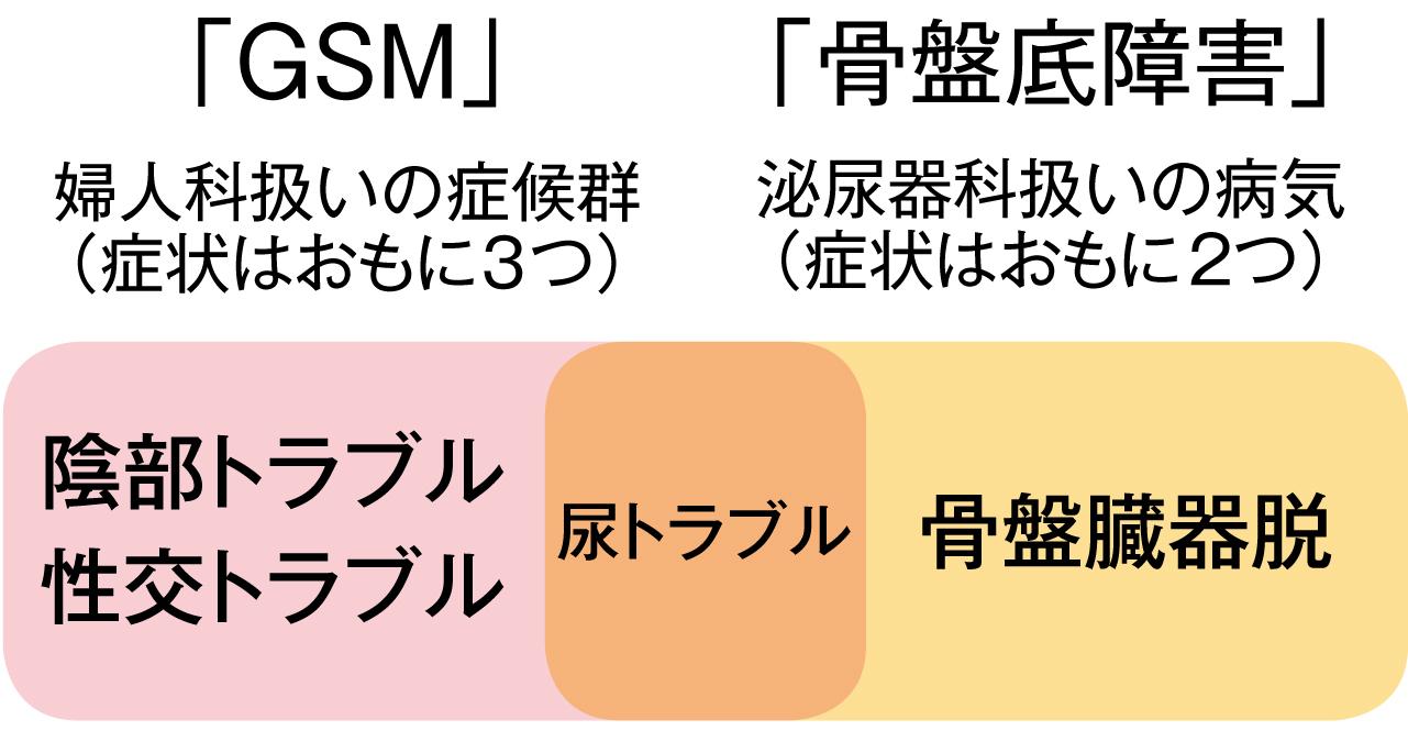 「GSM」と「骨盤底障害」