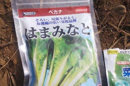 """""""のりちゃん""""を畑に蒔く?"""