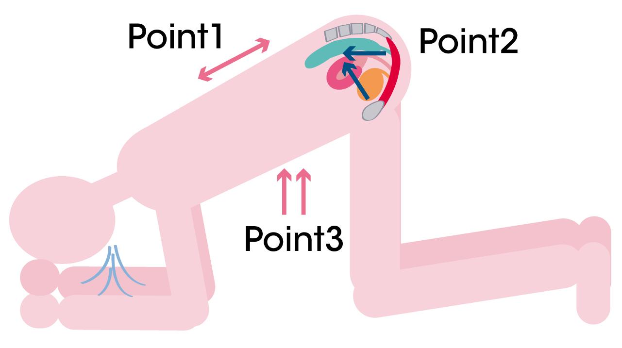 骨盤底トレーニング基本の動き