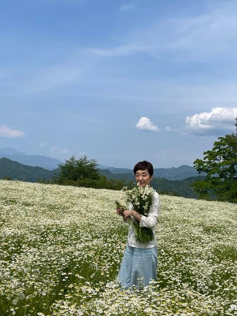 吉川γGTP回写真5カミツレ畑で