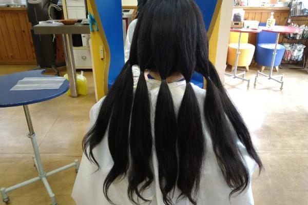 2回目のヘアドネーション。7束の髪の毛を郵送しました。