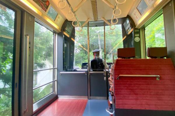 雨の季節の箱根。「あじさい電車」に乗りたくて ふらっと日帰りの旅。