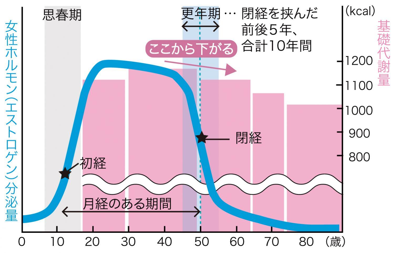 女性ホルモン&基礎代謝の低下のグラフ