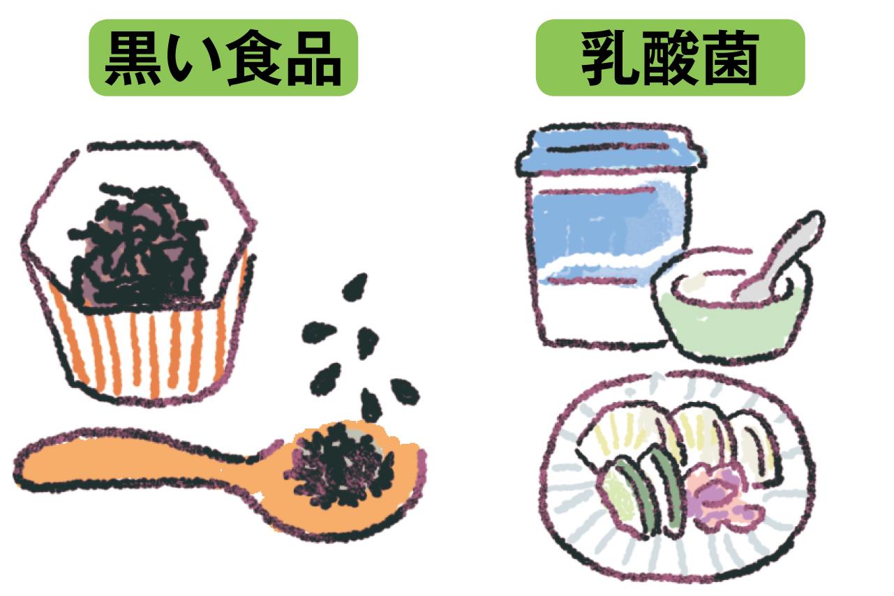 乳酸菌を含む食材と黒い食品