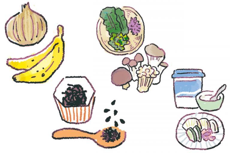 覚えておいたほうがいい「やせ菌」を増やす食材とは?/やせる食べグセ45|食べ方編⑤