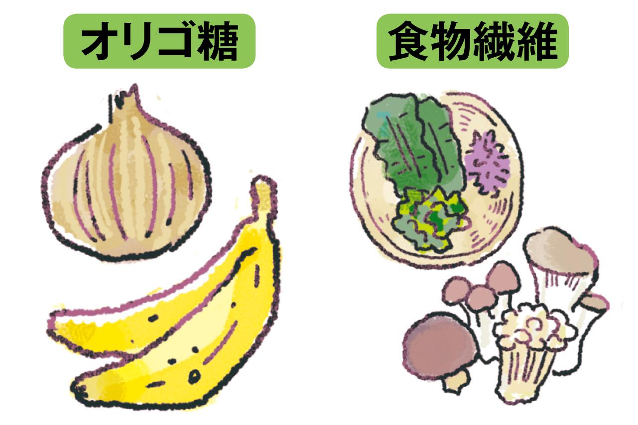 食物繊維とオリゴ糖を含む食材